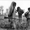 চামেলীবাগের 'খালাম্মা' : একজন নিভৃতচারী মহিয়সী